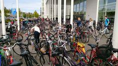 Bicycle day. September 2016 September, University, Bicycle, Day, Vehicles, Bike, Bicycle Kick, Bicycles, Car