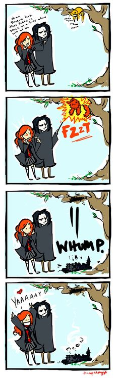 The adventures of Lily Evans and Severus Snape