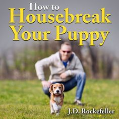 Dog Behavior Training to Housebreak Your Puppy - Puppy Potty Training Puppy Potty Training Tips, Training Your Dog, Apartment Puppy, House Breaking A Puppy, Puppy House, Best Puppies, Dog Behavior, New Puppy, Dogs