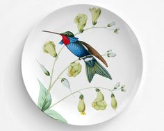 A personal favorite from my Etsy shop https://www.etsy.com/listing/469684511/red-throat-humming-bird-bird-plate