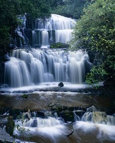 Purakanui falls, The Catlins ... there are so many beautiful waterfalls here. The walk through the bush to get to them, and the stunning natural spectacle of them is overwhelming every time.
