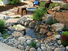 Chitrasutra: Create your own mini - pond :)