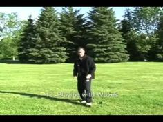 Tai Chi, Qigong & Feng Shui Institute | Video DVD and Course by Tai Chi 18