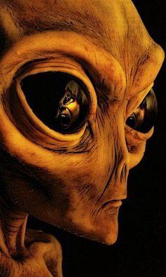 Estraño Estranjero (DjeepersCreepers) by DjeepersCreepers on SoundCloud Alien Pictures, Alien Photos, Alien Tattoo, Aliens And Ufos, Ancient Aliens, Alien Aesthetic, Alien Drawings, Grey Alien, Alien Character