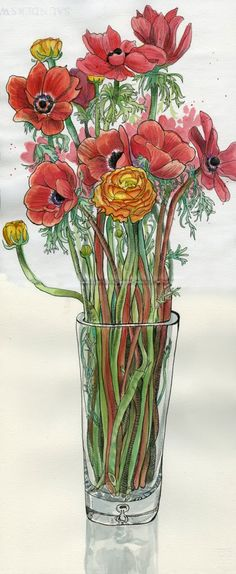 Tommy Kane's Art Blog: Search results for flower