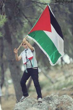 فلسطين تجمعنا