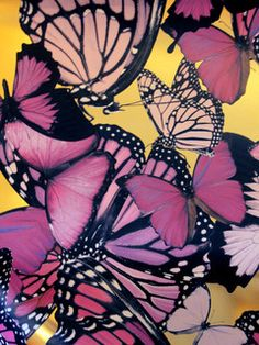"""A butterfly is like a flying flower, it has been said. And we agree! This bold design features large-scaled butterflies (the largest being 24"""" wide) printed on"""