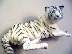 Dollhouse Miniature White Tiger *Handsculpted