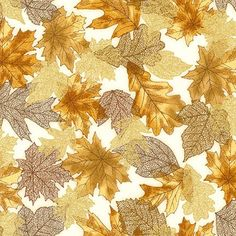 Robert Kaufman - Shades of the Season 10 SRKM-16751-16 BROWN