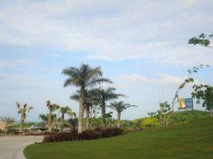 Punta Tiburón 3