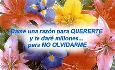 Imagenes De Amor Con Frases Romanticas!