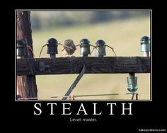 Stealth - Master