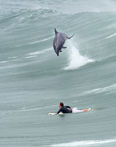the best surfer...