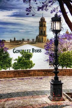 Apartment Dorada recommends: While visiting Jerez, be sure to make a stop at the Gonzalez Byass bodegas for a deep dive into the world of cherry (and a couple of glasses at the end of the tour ;)) - in Jerez de la Frontera, Spain.
