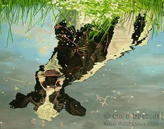 A cow looking at her reflection in the water. Painting by Clara Bastian. 80 cm x 100 cm. Oil on canvas.