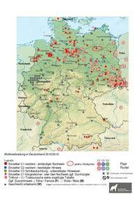 Karte Wolfsnachweise Deutschland 2015/2016