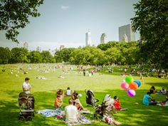 Picnic in Sheep Meadow in Central Park.