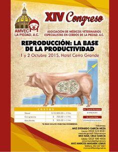Asociación de Médicos Veterinarios Especialistas en cerdos de La Piedad, A.C. ¡Anunciate en Desarrollo Porcicola!
