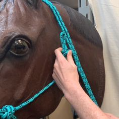 Tying a Rope Halter Today s TipTuesday is tying Horse Halters, Horse Saddles, Horse Riding Tips, Horse Gear, Rope Halter, Horse Care Tips, Horse Facts, Horse Videos, Horse Accessories