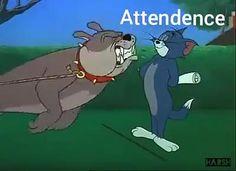 Funny Vidos, Latest Funny Jokes, Funny School Memes, Funny Video Memes, Funny Laugh, Stupid Funny Memes, Tom And Jerry Funny, Tom And Jerry Cartoon, Tom And Jerry Pics