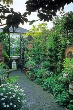 Small urban town Italianate style courtyard garden with climber clad brick boundary wall, topiary box Buxus spirals, urn as focal point framed by gates at end of path - Cheltenham, Gloucestershire