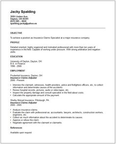 Image Result For  Popular Resume Formats   Job Search