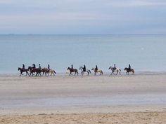 balade-a-cheval-sur-la-plage-de-la-baule Guide du tourisme en Loire-Atlantique Pays de Loire