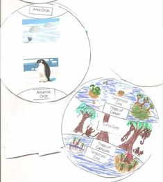 Geography ~ Learn About Hemispheres Minibook   Practical Pages