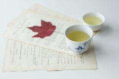 My tasting notes: Baochong — The Tea Squirrel