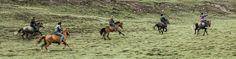 Pferderennen als Nachmittagsbeschäftigung der tibetischen Bevölkerung in Qinghai, China China, The Incredibles, Horses, Amazing, Places, Pictures, Animals, Horse Racing, Travel Report