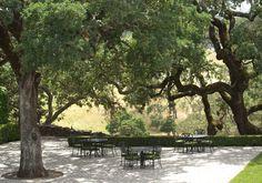 Jordan Vineyard & Winery | Healdsburg, California: A Rare Vintage
