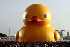 Un immense canard gonflable dans le port deKaohsiung à Taïwan, le 19 septembre.