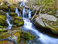 An easily accessible park from much of the East Coast, Shenandoah National Park is a wonderland of vistas and calming waterfalls in Northern Virginia. The park is in the Blue Ridge Mountains, and a portion of the Appalachian Trail runs through it.