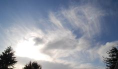 magnificent mares' tails and a fleeting glory