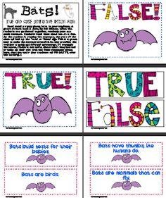 True/false bat activity