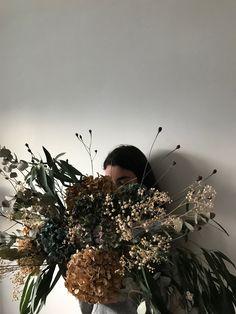 Dandelion, Floral, Flowers, Plants, Flora, Royal Icing Flowers, Dandelions, Plant, Florals