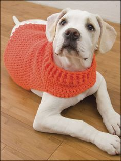 Best Crochet Stitches Hunter's Dog Sweater - Technique - Crochet - Stitch this super easy, non-restrictive sweater for your energetic best friend. Made with medium (worsted) weight yarn and size I hook. Crochet Dog Sweater Free Pattern, Crochet Jumper, Dog Pattern, Knit Crochet, Sweater Patterns, Crochet Dog Clothes, Pet Clothes, Crochet Stitches, Crochet Patterns