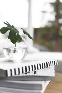 Serax vase and fig leave. By Elisabeth Heier