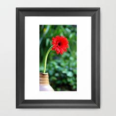 Gerbera Daisy In The Jar Framed Art Print by Guna Andersone - $34.00