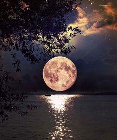 Moon light on water Z