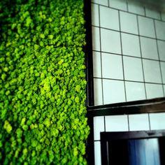 Moss tiles kitchen restaurant design