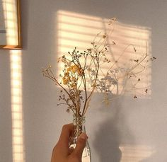 Image discovered by Find images and videos about cute, flowers and sun on We Heart It - the app to get lost in what you love. Cream Aesthetic, Gold Aesthetic, Classy Aesthetic, Flower Aesthetic, Aesthetic Vintage, Aesthetic Photo, Aesthetic Pictures, Aesthetic Pastel Wallpaper, Aesthetic Backgrounds