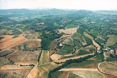The view over Tenuta Valdipiatta vineyards ( www.valdipiatta.it ), one of the most known producers of #Vino #Nobile  and #Montepulciano town  (credits Wall Street Journal)