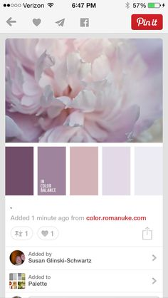 Color inspirations... Purples, dusty rose and gray