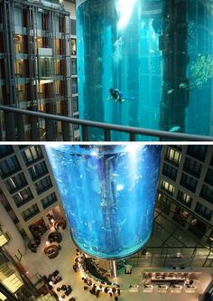 Design Architecture. That is one big Fish Tank *.*