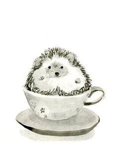 Hedgehog in a Teacup - Original Illustration Print