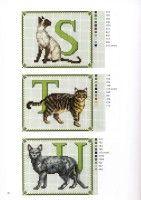 Gallery.ru / Фото #6 - Francien van Westering - Katten borduren met francien - anfisa1