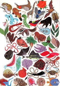 charley harper illustration.