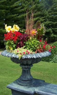 This is a perfect idea for Container Gardening! The birds will miss their birdbath, but the butterflies will feast on the bounty of botanicals!!!