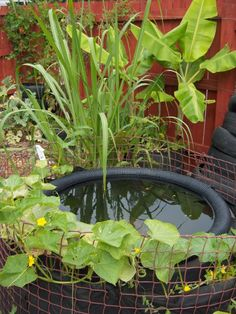 Fish pond from tractor (or car) tyres